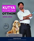 Kutyakozmetika otthon