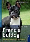 Francia buldog